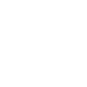tab-icon-strategysavvy.png