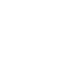 tab-icon-ecodev-solutions.png