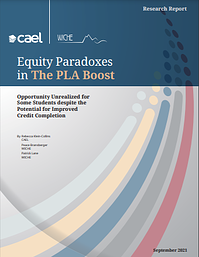 Equity Paradox